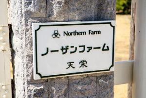 Northern Farm1 300x202 일본중앙경마 미호, 릿토 경주마 조교 센터의 비밀과 종마목장