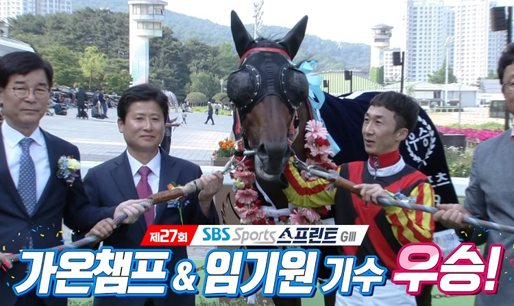 SBS스포츠 스프린트 우승마 서울경마장 SBS스포츠 스프린트, 뚝섬배 대상경주 결과 및 영상