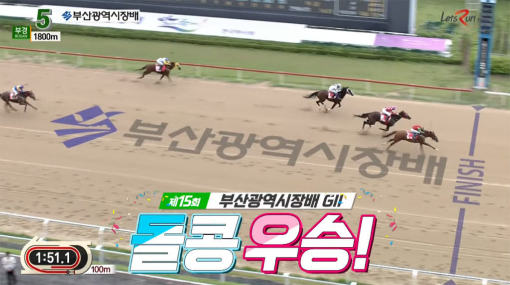 dolkong win 1024x573 해외원정 복귀전 돌콩, 2019 부산광역시장배 경마대회 우승