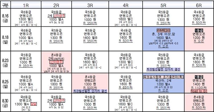 8월경마시행일정 8월 한국마사회 경마시행 계획! 부산경마장 퀸즈투어 시리즈 2탄 KNN배