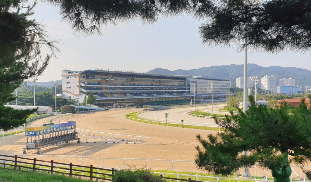 1600m 1024x601 KRA컵 클래식 개최! 마사회 2019년 10월 서울 부산 경마시행계획