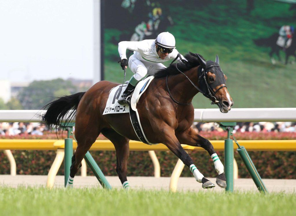 Japanese Derby winner 1024x748 일본더비 우승마 Roger Barows 개선문상 준비중 천지굴건염으로 전격 은퇴!
