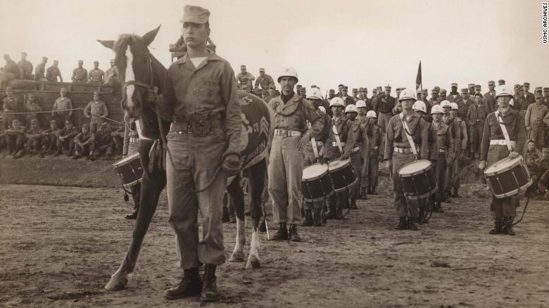 Sgt. Reckless 서울 실내승마장에서 한국전쟁 영웅 군마 '레클리스(Reckless) 1953' 공연
