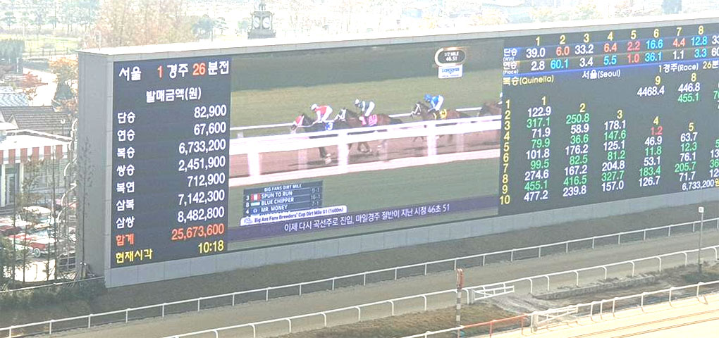 blue chiper dirt mile 커뮤니티
