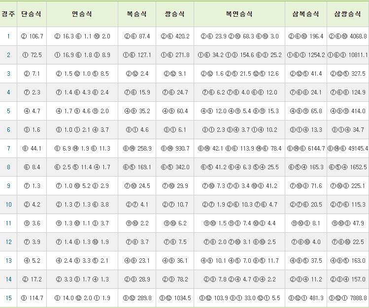 부산경마결과 한국마사회 2019 부산경마 송구영신 기원 15R 삼쌍승식 경마예상 및 결과