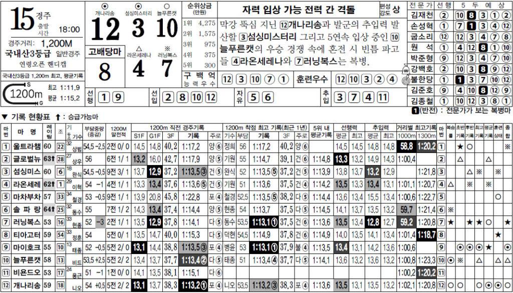 스피드예상지 서울경마예상 1024x586 일요경마 Trainers Cup, 성탄절기념 특별경주와 삼쌍승식 경마예상 및 결과