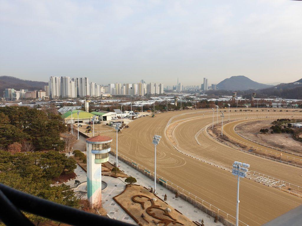 seoul racecourse sat 1024x768 커뮤니티