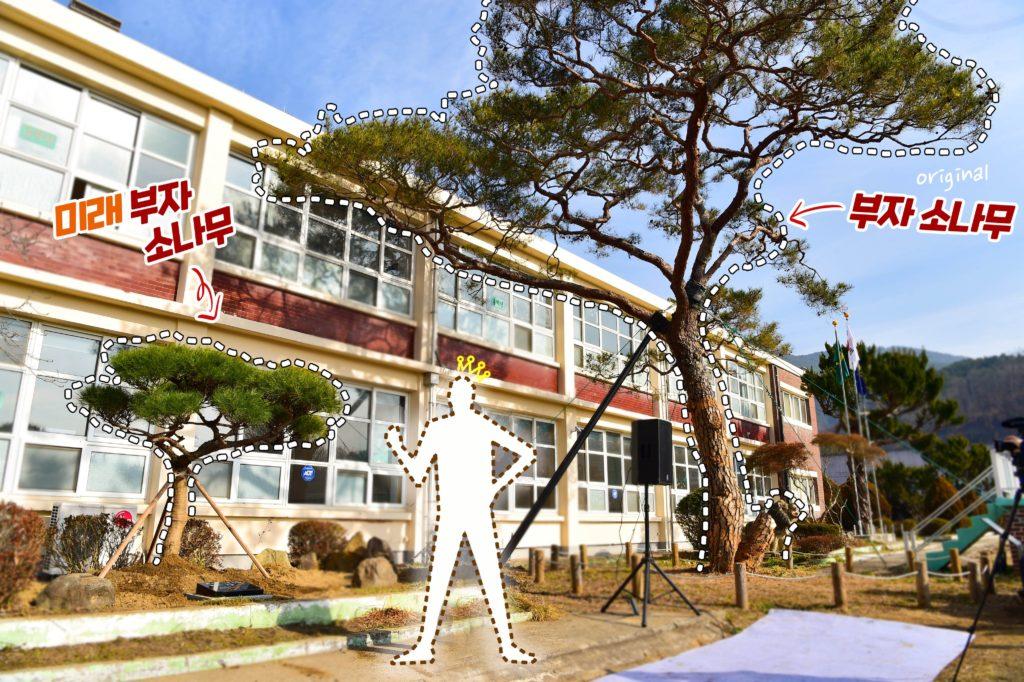 재벌 부자소나무 1024x682 진주시 대박 포토스팟, 삼성 LG 재벌 회장이 심은 지수초등학교 부자 소나무