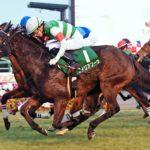 Fairy Stakes 150x150 경마 일정표