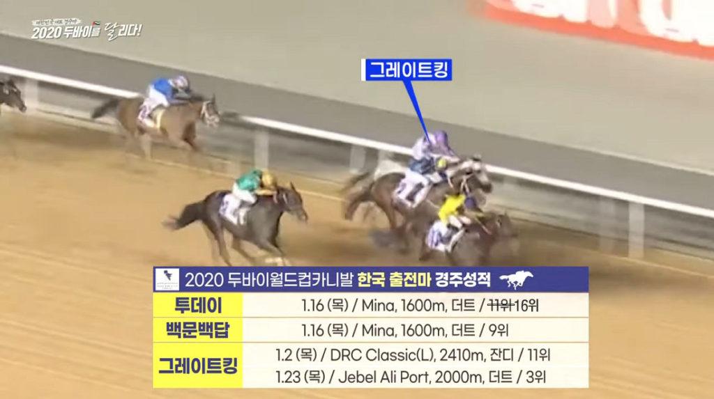 두바이월드컵2020 1024x573 한국경마 대표 경주마 2020 두바이월드컵 카니발 참전기