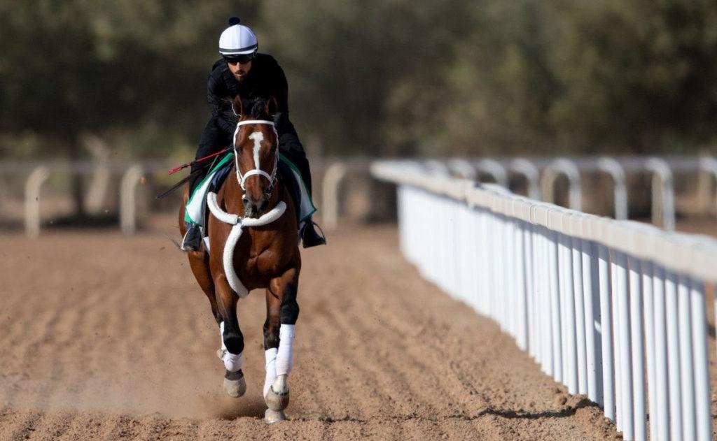 maximum security gallop 1024x631 미국 부정경마 사태로 사우디컵 우승마 맥시멈시큐리티 마방 이적