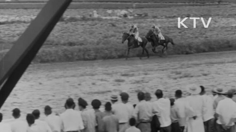 뚝섬경마장 한국마사회 뚝섬 서울경마장 성황! 1957년 최초의 마권 장외발매소 명동에 개장