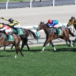 Queen Stakes 150x150 경마 일정표