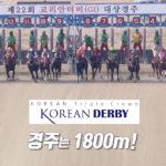 korean derby 150x150 경마 일정표