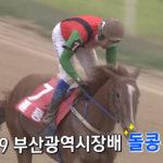 부산광역시장배 돌콩 150x150 경마 일정표