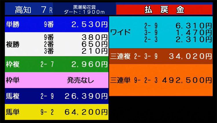 고치경마 삼관경주 결과 일본 고치경마 트리플크라운 제3관문 쿠로시오 킷카쇼 대이변