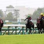 Kobe Shimbun Hai 150x150 경마 일정표