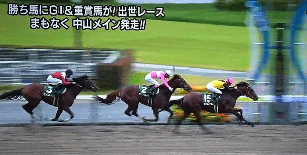 sirius Cafe Pharoah 1024x520 일본 JRA 주쿄경마장 시리우스 스테익스(Sirius Stakes, G3) 카페파라오 우승