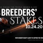 Breeders Stakes 150x150 경마 일정표