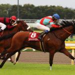Fuchu Himba Stakes 150x150 경마 일정표