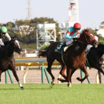 Saudi Arabia Royal Cup 150x150 경마 일정표