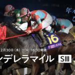 Tokyo Cinderella Mile 150x150 경마 일정표