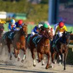 Negishi Stakes 150x150 경마 일정표
