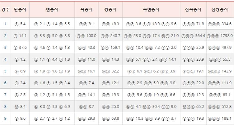 경주성적표20190331 한국마사회 일요경마 결과 및 두바이월드컵 적중마권
