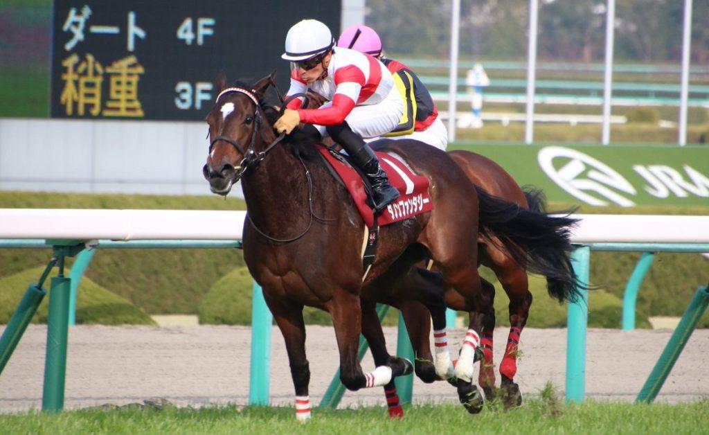 오카쇼 일본경마 1024x628 일본 한신경마장 G1 오카쇼(桜花賞) 벚꽃 경마! 3세 암말 최강자는?