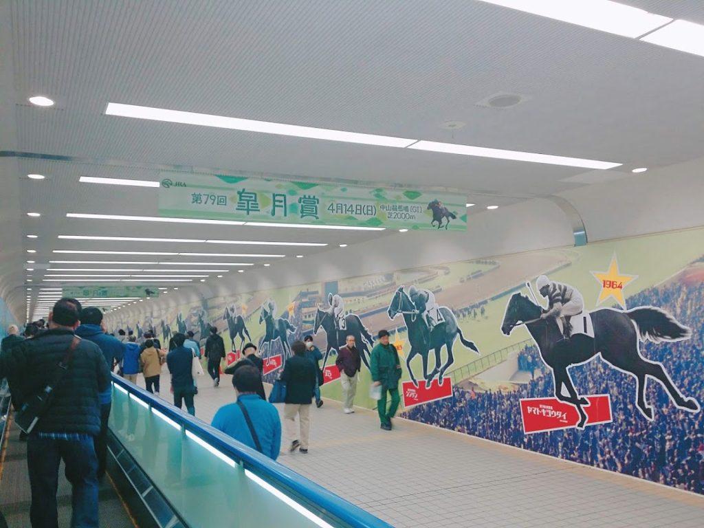 nakayama racecourse 1024x768 도쿄 나카야마 경마장 방문 일본경마 실전베팅! 고배당 적중마권