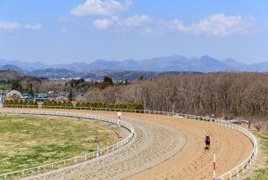 Northern Farm2 300x202 일본중앙경마 미호, 릿토 경주마 조교 센터의 비밀과 종마목장