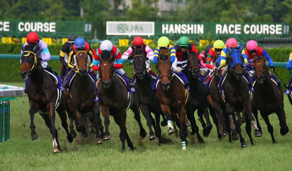 hanshin racecourse 1024x602 일본경마 2019 다카라즈카기념(G1) 그랑프리 경주와 기동전사 건담