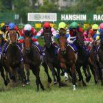 hanshin racecourse 150x150 경마 일정표