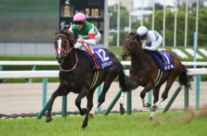 hanshin racecourse01 300x198 일본경마 총결산 다카라즈카 기념 대상경주 결과! 암말 역대 4번째 우승