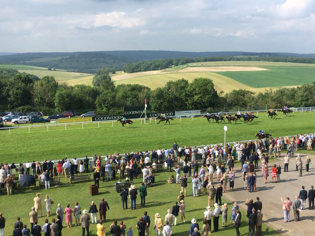 Goodwood Racecourse3 1024x768 영국 경마축제 Goodwood Festival과 아름다운 굿우드 경마장 풍경