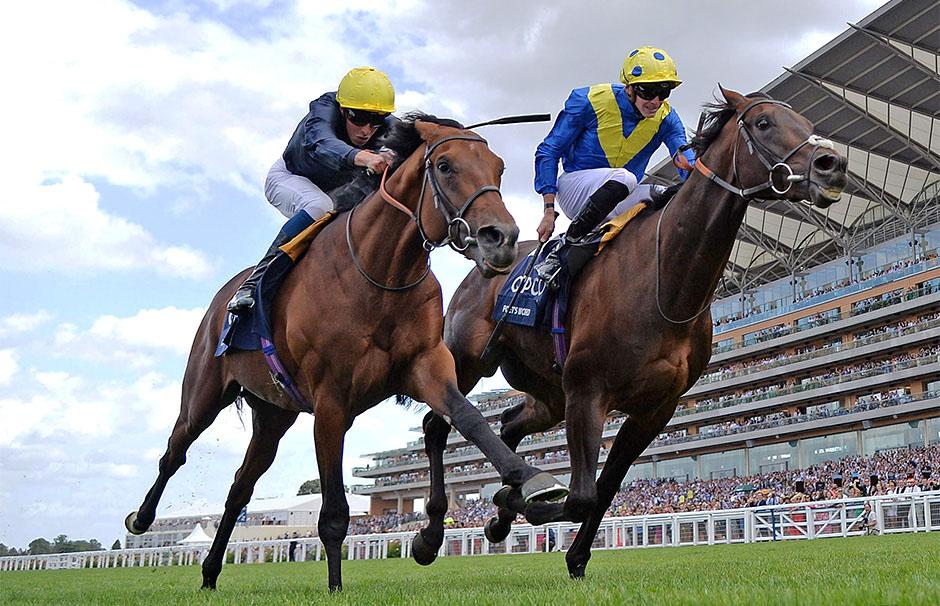 King George VI and Queen Elizabeth Stakes 영국 경마대회 애스콧 킹조지 6세 퀸엘리자베스 스테익스 분석