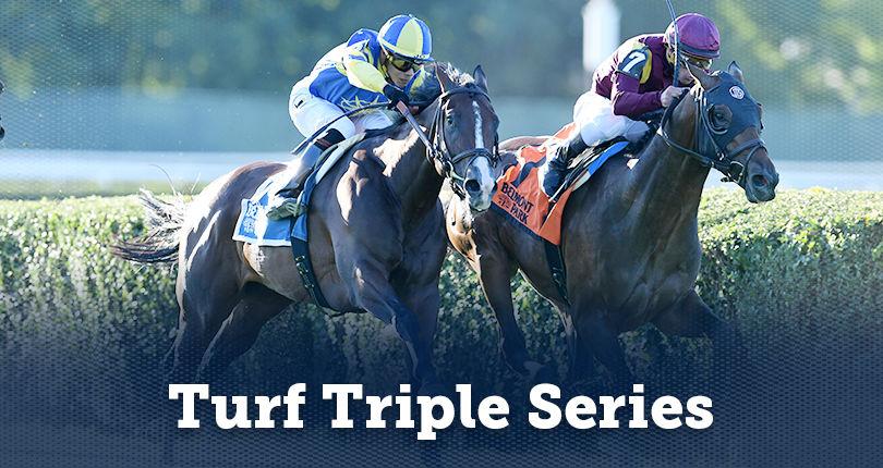 Turf Triple Series [세계경마] 미국 뉴욕 벨몬트경마장 3세마 삼관경주 더비, 오크스 경마대회