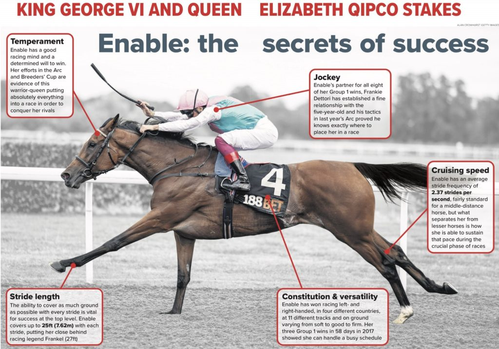 enable horse 1024x716 [경마속보] 영국 애스콧경마장 킹조지 6세 퀸엘리자베스 스테익스 Enable 11연승