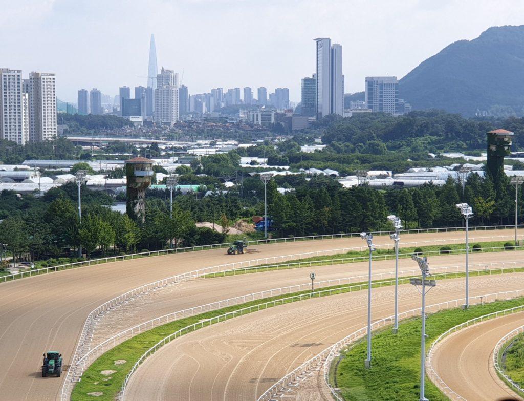 과천경마장 풍경 1024x783 한국마사회 서울경마장 마일(Mile, 1600m) 경주로 개선공사 완료