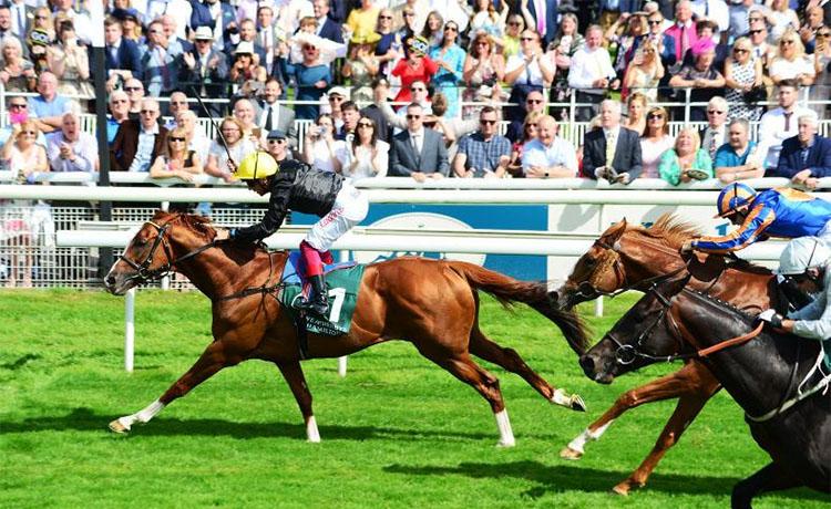 stradivarius 영국 요크경마장 Nunthorpe Stakes(G1) 스프린트 경주 Battaash 압승