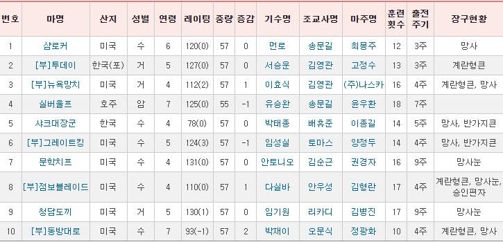MBC스포츠플러스 그랑프리 출전마 2019 MBC 스포츠플러스 그랑프리 경마대회 문학치프 vs 실버울프