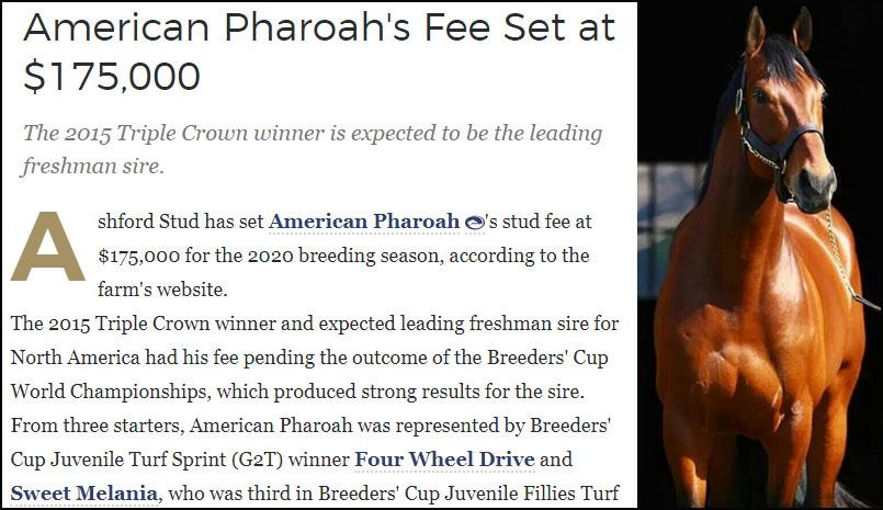 American Pharoahs Fee 미 삼관마 아메리칸 파로아(American Pharoah)의 내년 교배료는 2억원