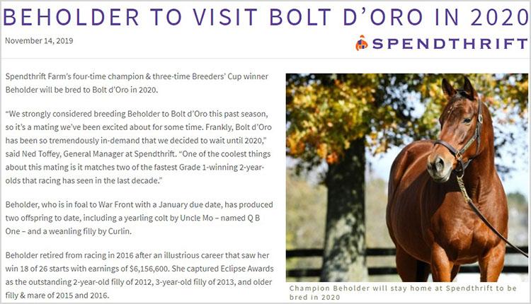 BEHOLDER 브리더스컵 2승의 씨암말 비홀더(Beholder)의 내년 교배 상대는 Bolt dOro