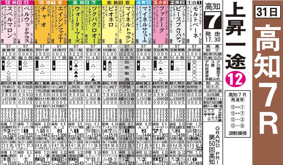 kochi racing 31일 일본지방경마 그랑프리 대상경주와 오오이경마 pdf 예상지