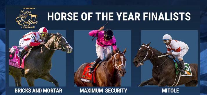 Eclipse Awards Horse of the Year 미국 경마시상식 이클립스 어워즈 연도대표마 Bricks and Mortar
