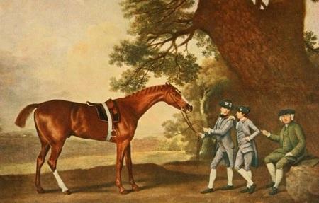 Eclipse horse 미국 연도대표마 등 경마 시상식 이클립스 어워즈 2019 결과