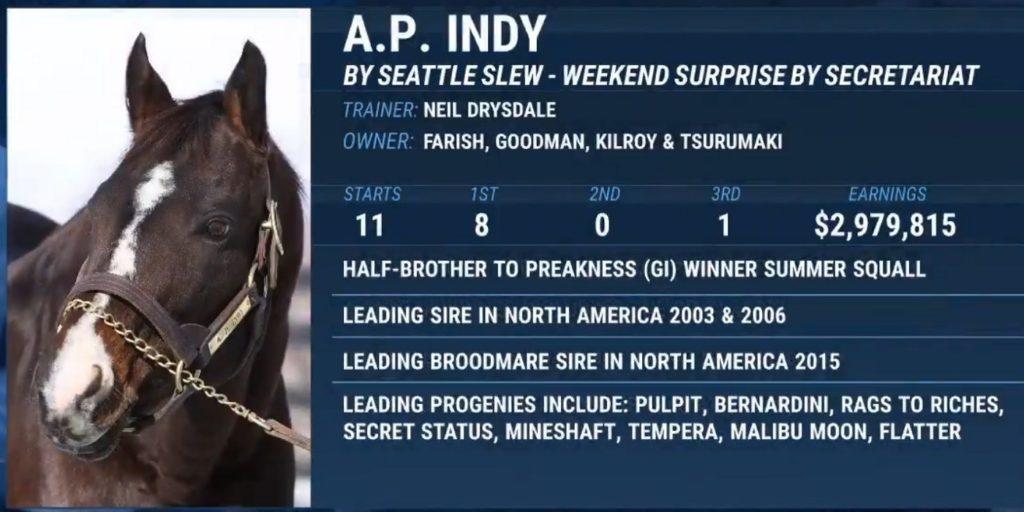 A.P. Indy. 1024x512 경마계 최고의 씨수말 에이피인디(A.P. Indy) 21일 사망! 한국마사회 수입 자마
