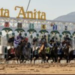 Santa Anita Derby 150x150 경마 일정표