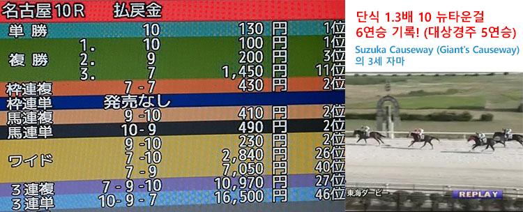 도카이더비 경마결과 일본지방경마 나고야경마장 3세마 대상경주 도카이 더비