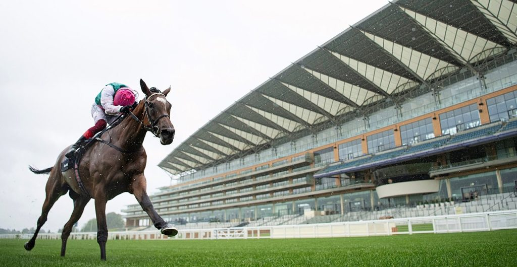 enable King George 1024x530 영국 애스콧경마장 킹조지 King George VI and Queen Elizabeth Stakes